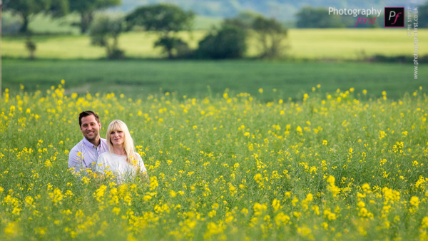 South Wales Rapeseed Field (4)